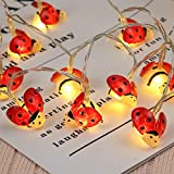 LED Lichterkette Batteriebetrieb, Frashing LED-Lichterkette Marienkäfer Schlafzimmer Licht Warme Farbe Garten Hängelampe Außenbeleuchtung Energiesparlampe Weihnachte, 2 m (2 m-20 Lampe)