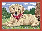 Ravensburger Malen nach Zahlen 28343 - Süßer Labrador, Malset hergestellt von Ravensburger Spieleverlag