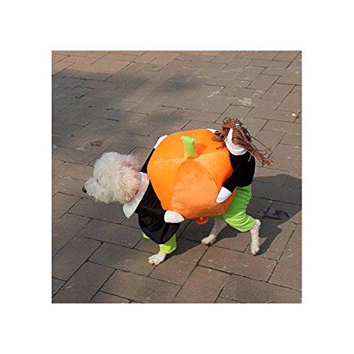 iPettie Pet Hund Kleidung Hundekostüm Halloween Kürbis Fashion Kostüm Haustier Verkleidung Cosplay Karneval für alle kleinen Hunde XS/S/M/L/XL (Hundekostüme)