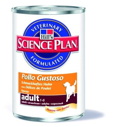 Hills Science Plane Adult Chicken 12X370 G