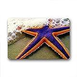 DOUBEE Neu Mode Design Starfish Fussmatte Schmutzmatte Haus Fußabstreifer 46cm X 76cm