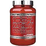 Scitec Ref.101173 Protéine d'Isolat de Whey 920 g
