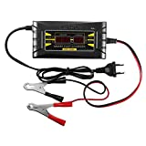 HITSAN 12V 10A Smart PWM Battery Charger LCD Digital Display for Car Motor One Piece