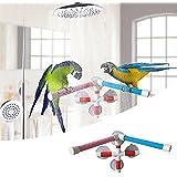 Papagei Bad Stange Barsch Vogel Dusche Stehhilfe Bar für Papagei Macaw Afrikanische Grays Budgies Kakadu Sittich Vogelbad Barsch Spielzeug