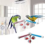 Parrot Bath Stand Perch Bird Shower Standing Bar for Parrot Macaw African Greys Budgies Cockatoo Parakeet Bird Bath… 9