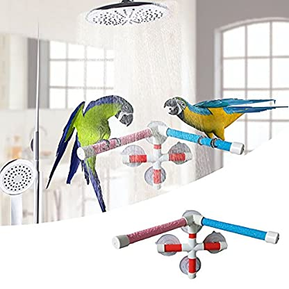 Parrot Bath Stand Perch Bird Shower Standing Bar for Parrot Macaw African Greys Budgies Cockatoo Parakeet Bird Bath… 1