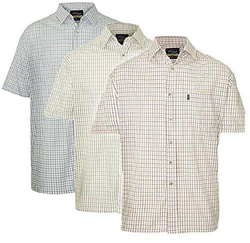 Champion Mens Tattersall Country Short Sleeve Shirt-3PK-2XL-Max 55