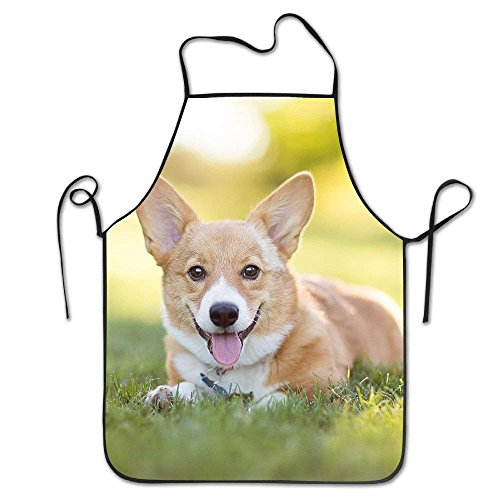 Junzhilin Shop Funny Personality Apron Pembroke Welsh Corgi Puppy Resting In Grass Barbecue Cooking Apron for Boyfriends Women Father's Day Gifts