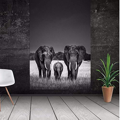 QLCUY HD Cuadro Moderno Imprimir En Lienzo Tres Únicos Elefantes del Amor....