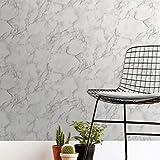 Fine Decor FD42274 Papier peint Motif marbre uni Blanc