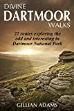 Divine Dartmoor Walks (Volume Book 1)