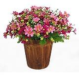 bibabo251ramo 28Jefes artificial diseño de margaritas flores Home boda Garden Decor, tela, Rosa, talla única