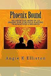 Phoenix Bound: An adoptive mom of 13 shares her struggle raising traumatized children