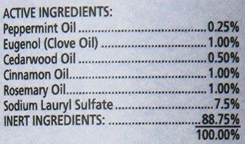 SynergyLabs Richard's Organics Flea & Tick Shampoo; 12 fl. oz. 2