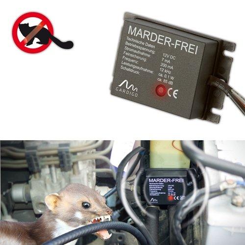 gardigo-anti-martre-voitureprotection-efficace-contre-les-martres-loutres-blaireaux-et-furets
