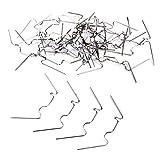 100x Federstahl Verzinkt Gewächshausklammern - Glasklemmen Klammern für Gewächshaus & Glashaus - Perfekte Gewächshaus Zubehör Clips