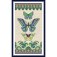 CaptainCrafts New Stamped Cross Stitch Kits Preprinted Pattern Counted Embroidery Starter Kits for Beginner Kids and Adults - Three Butterflies