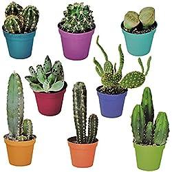 Unbekannt 8 tlg. Set: XL Wandtattoo / Sticker - Kaktus Kakteen Wüste Strauch Blume Blumen Mexiko - Wandsticker Aufkleber