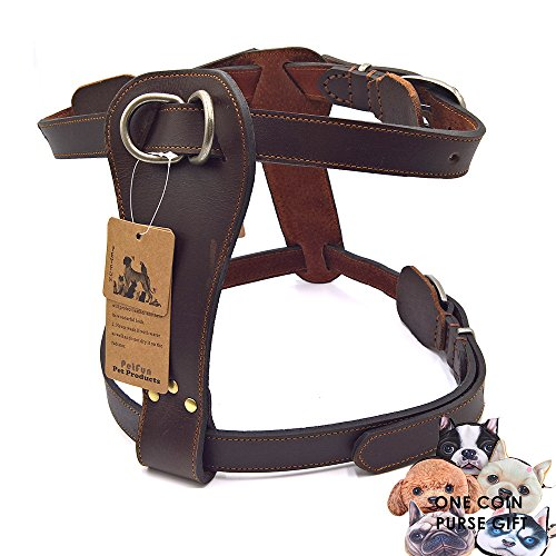 petfun Hund Exklusive Verstellbare Geschirr aus echtem Leder für Attack/Schutz Training und den täglichen Walking … (Monogramm-leder Personalisierte)