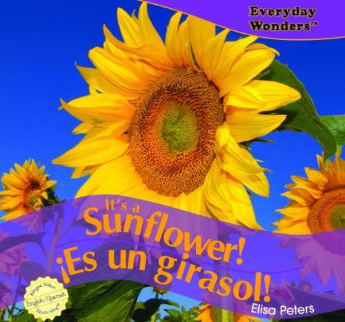 Its a Sunflower! / Es un girasol! (Everyday Wonders / Maravillas De Todos Los Días)