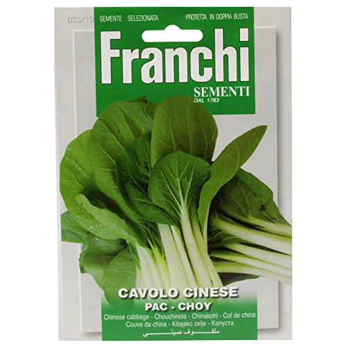 Seeds of Italy Ltd Franchi Chou chinois
