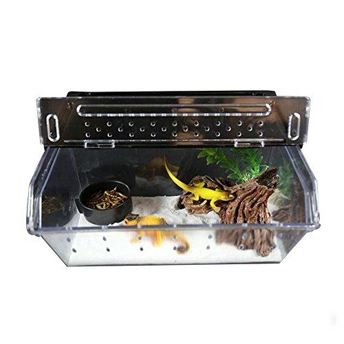 Faunarium mini, Amphibien und Insekten, Transport und Fütterungsbox für Reptilien, Reptilienbehälter, Fütterungsbox für Reptilien-Spinne Eidechse Frosch Cricket Turtle Crab Snack, zuchtbox insekten