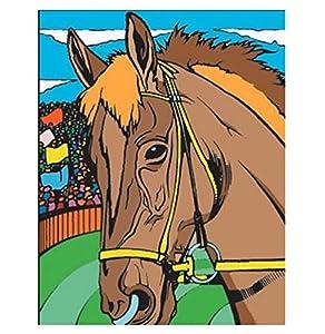 Colorvelvet 37x 28cm Caballo Sistema de Dibujo para Colorear (tamaño Mediano
