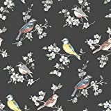 Graham & Brown SUPERFRESCO EASY papier peint support intissé Oiseaux vinyle 1005 x 52 cm noir