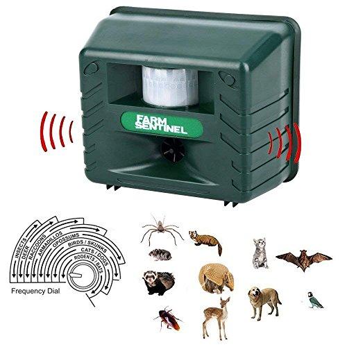 Sumeber Ultraschall Abwehr mit Solarbetrieb und Blitz gegen Katzen, Hunde, Marder, Tierabwehr | Katzenschreck,Hundeschreck, Marderschreck
