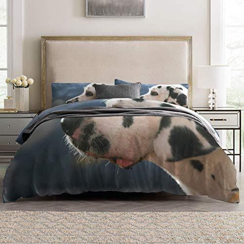 Soefipok 4er Set Bettbezüge Dalmatiner Leichte Pflegeleichte Bettwäsche Set für Herren, Damen, Jungen und Mädchen, Twin Size (Jungen Twin Bettwäsche)