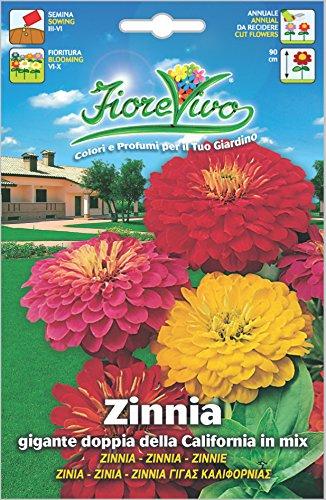 Hortus 60SDFZ024 Fiorevivo Zinnia Gigante Doppia della California, Mix, 13x0.2x20 cm