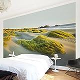 Vliestapete - Dünen und Gräser am Meer - Fototapete Breit Vlies Tapete Wandtapete Wandbild Foto 3D Fototapete, Größe HxB: 255cm x 384cm