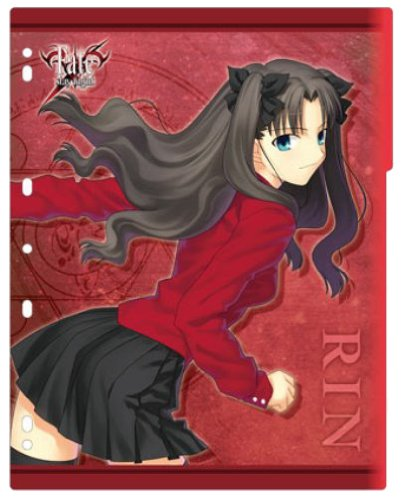 Character Binder Index Collection Fate / stay night \