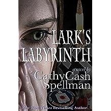 Lark's Labyrinth (English Edition)