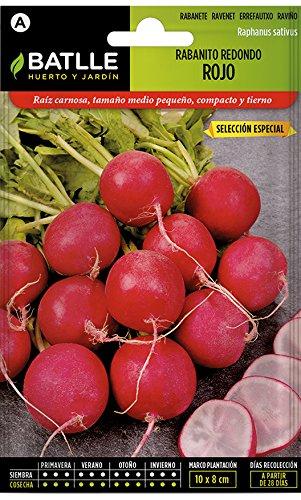 Batlle Gemüsesamen – Radieschen rund – Ausw. Especial (1800 Samen)