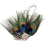 Jelinda de mujer novia de cristal de plumas de pavo real Hair Clip Hair Pin