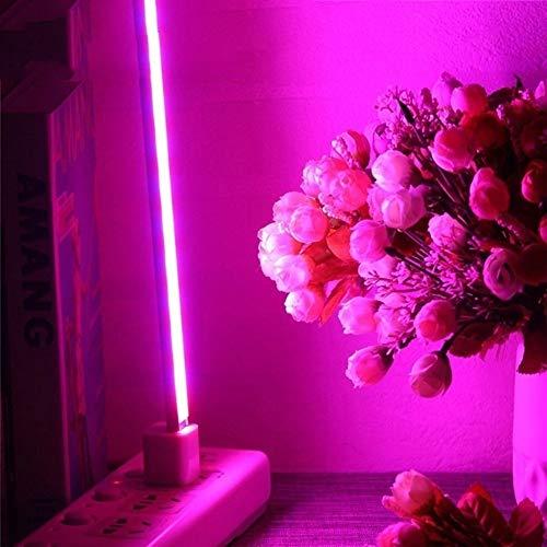 EqWong Pflanzenlampe, Wachsen licht Grow Lampe Pflanzenlicht, Tragbare 2,5 Watt USB UV Grow LED Wachsen licht Pflanzenleuchte Wachstumslampe Lampe für Bonsais Pflanzen