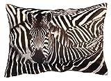 Kissenhülle Fotodruck Kurzplüsch Kissenbezug Deko Kissen ca. 40x60 cm #1330 Zebra B