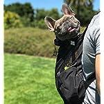 K9 Sport Sack | Dog Carrier Backpack for Small and Medium Pets | Front Facing Adjustable Dog Backpack Carrier | Fully… 18