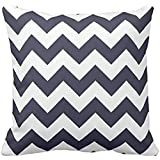Zigzag Pillow with Navy Blue Chevron case 1818