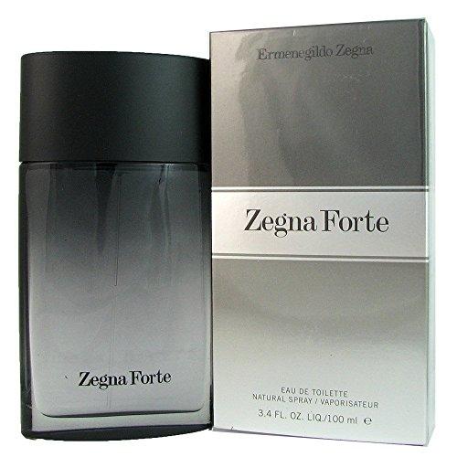 ermenegildo-zegna-forte-eau-de-toilette-100-ml