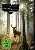 Der Förster vom Silberwald & Der Wilderer vom Silberwald / Doppel-DVD