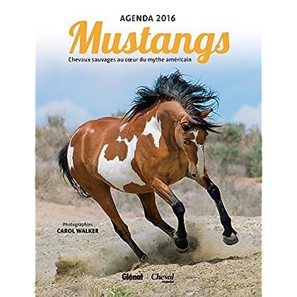 Agenda Mustangs 2016: Chevaux sauvages au coeur du mythe américain