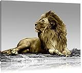 majestätischer Löwe auf Fels schwarz/weiß Format: 120x80 auf Leinwand, XXL riesige Bilder fertig gerahmt mit Keilrahmen, Kunstdruck auf Wandbild mit Rahmen, günstiger als Gemälde oder Ölbild, kein Poster oder Plakat