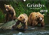 Grizzlys - Der Kalender CH-Version (Wandkalender 2019 DIN A3 quer): Grizzlybären - ein Fotoshooting in der Wildnis Alaskas (Geburtstagskalender, 14 Seiten ) (CALVENDO Tiere) - Max Steinwald