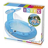Best Pool Hoses - Dlittles Intex Whale Spray Pool Review