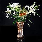 C&S Bleifreie Kristall Blumenvase Home Warm Water Kulturpflanze Kreative Blumen Container Verdickung und Textur