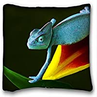 Decorativo Quadrato Throw Pillow Case animali camaleonte Fiore Crawls Blu Verde Giallo Rosso 18 x 18 in due lati