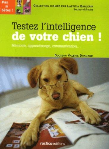 Testez l'intelligence de votre chien : Mémoire, apprentissage, communication...