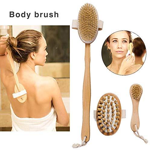 Dry Brushing Körperbürste zum Bürsten und Peelen trockener Haut mit Naturborsten und langem Griff-Set Cellulite-Massagebürste Geschenkset Rückenbürste Scrubber Bad- und Duschbürste Gesichtsbürste